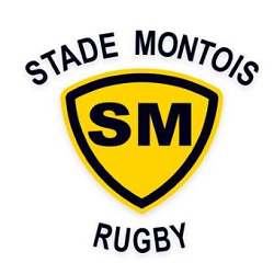 logo stade montois